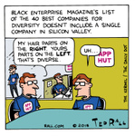 Silicon Valley Diversity